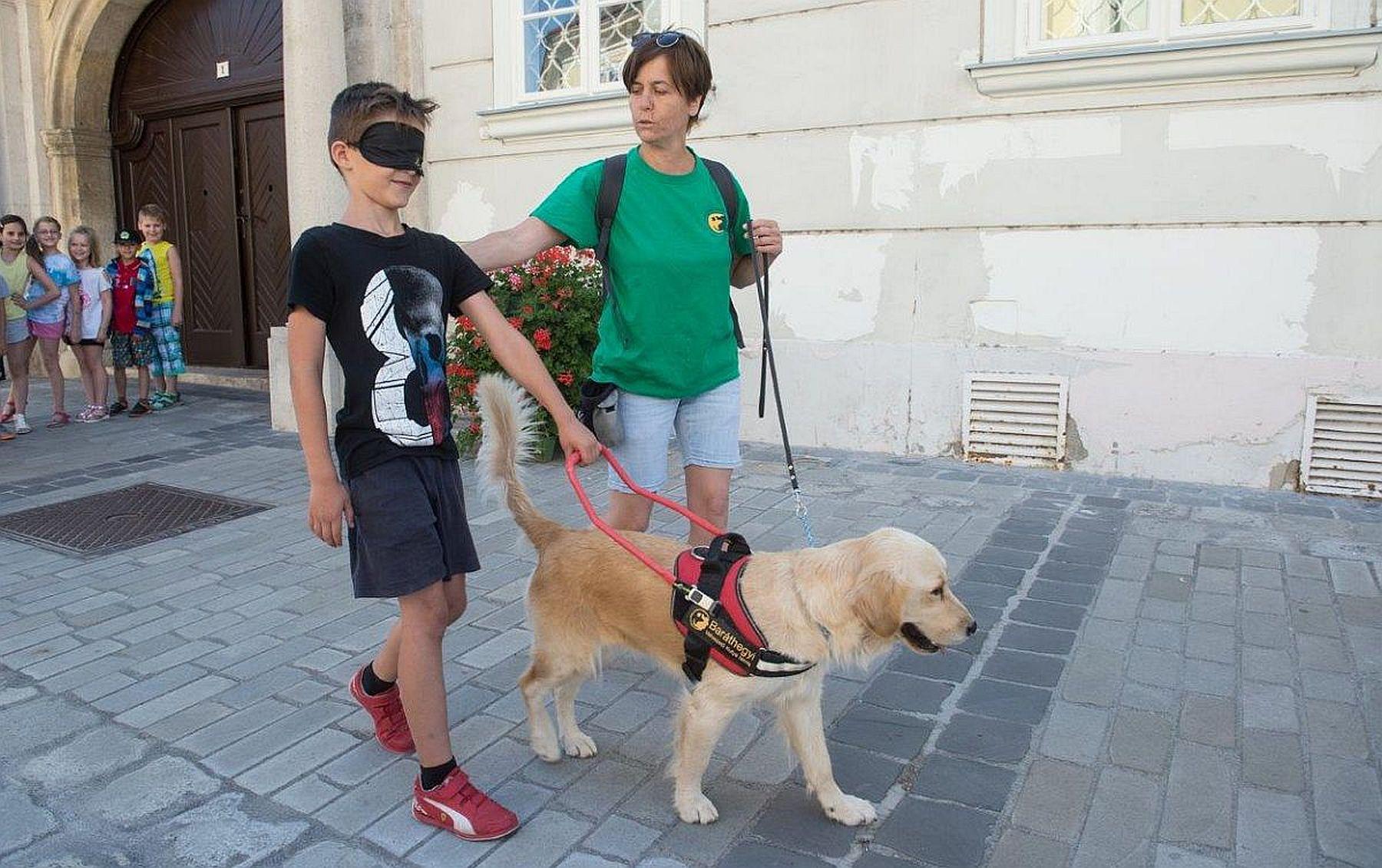 b512bcd14b Az Esélynap lehetőséget ad arra, hogy sokak megismerjék a fogyatékkal élők  mindennapjait. A programon 18 fogyatékosügyi szervezet, illetve 6 a témához  ...